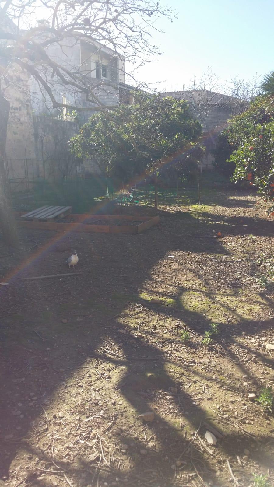 Solar edificable SA POBLA